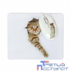 CBR Capture USB, Мышь сувенирная+ коврик, 1200 dpi, рисунок