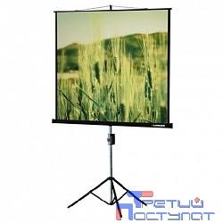 Lumien Master View LMV-100102 Экран на треноге 153x 153см настенно-потолочный рулонный черный