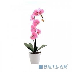 Светильник  СТАРТ   LED Орхидея2 розовый
