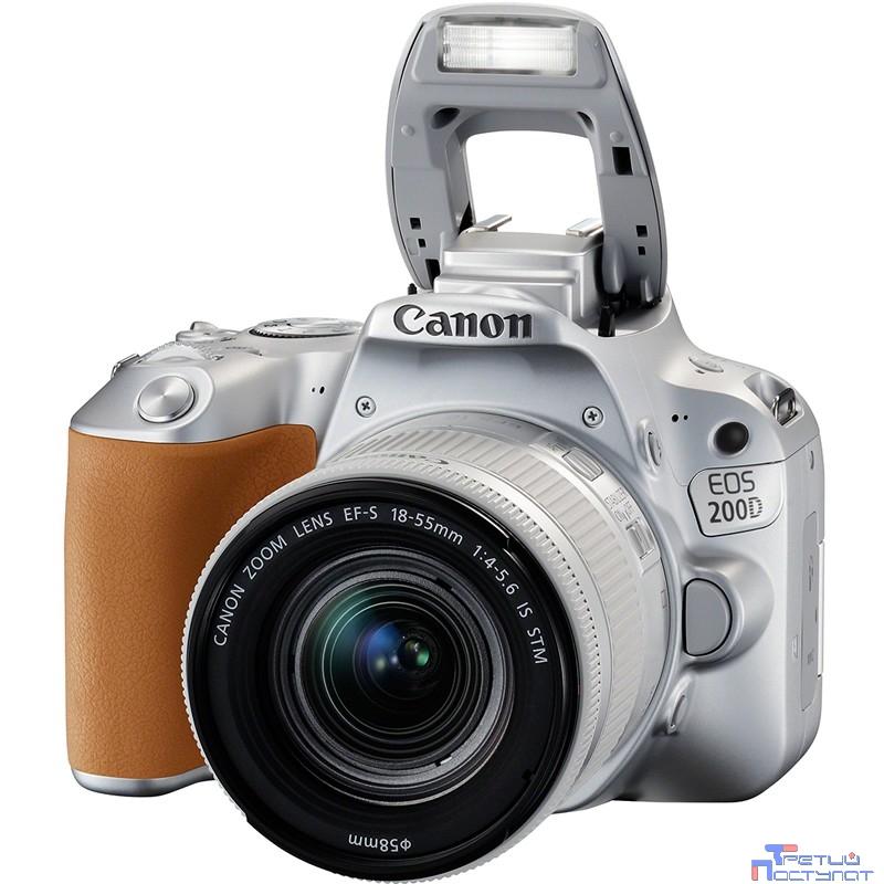 Canon EOS 200D серебристый {24.2Mpix EF-S 18-55mm f/3.5-5.6 IS STM 3