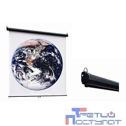 ScreenMedia Economy-P [SPM-1102] Экран настенный,180x180 MW, 8-уг. корпус